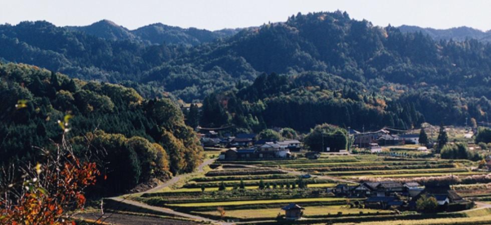 農村景観1